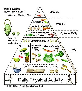 Other asian diet food pyramid useful